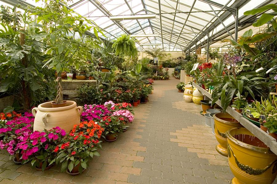 jardinerie p pini re saumur entreprise berjamin et fils